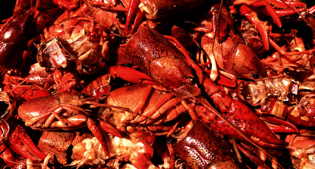 Beer-Chronicle-Houston-Beer-best-crawish-beer_0005_mudbugs-and-beer