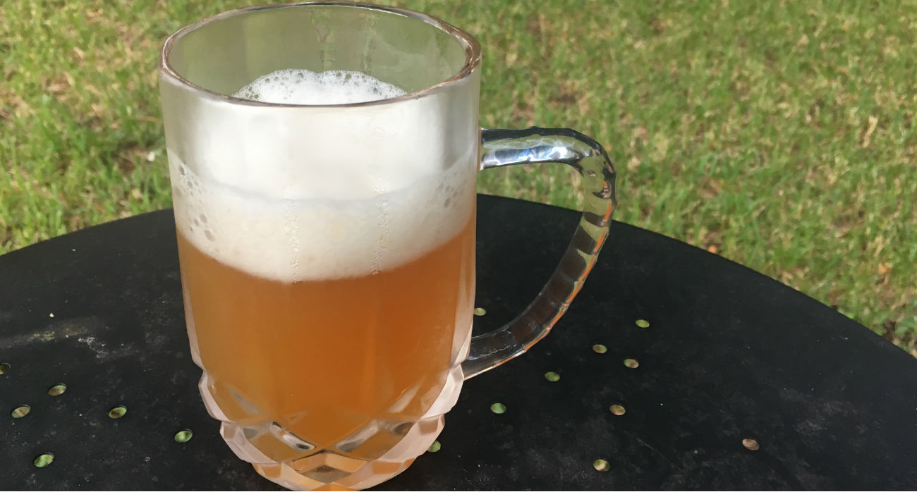 beer-chronicle-houston-craft-beer-bakfish-i-tell-you-wit-glass
